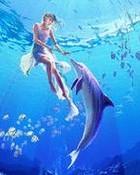 dolphin & Girl.jpg
