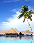 paradise_places2.jpg