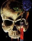Skulls-Vampire.JPG