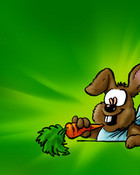 funny_bunny4_3.jpg