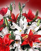 Flower020_800.jpg