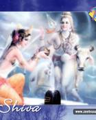 Shiva0_800.jpg