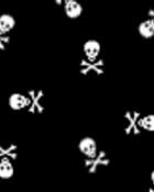 tiny white skulls.jpg