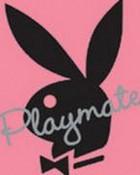 Playmate.jpg