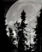 moon wallpaper 1