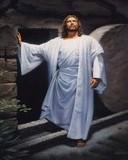 Free jesus lives.jpg phone wallpaper by cally