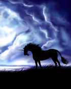 one black horse.jpg wallpaper 1