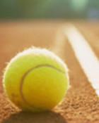 tennis ball in rear line.jpg