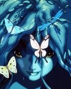 bfly blue.jpg