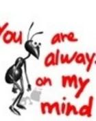 always on my mind l01.jpg