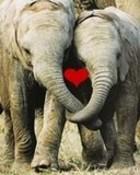 big love l07.jpg