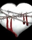 Free love hurts l08.jpg phone wallpaper by cally