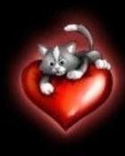 love kitty l08.jpg