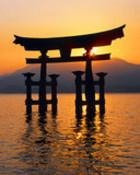 floating torii.jpg