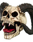 img_skulls_3431.jpg