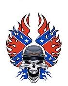Bio Skulls assorted # 1.JPG
