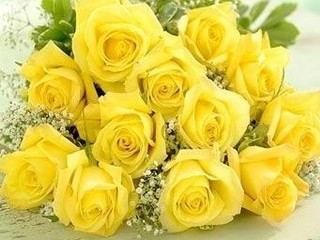 Free yellow roses phone wallpaper by musclelaura
