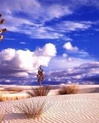 desert wallpaper 1
