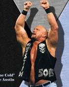 2nd WWE WWF Stone Cold Steve Austin Wallpaper bhcr(1).jpg